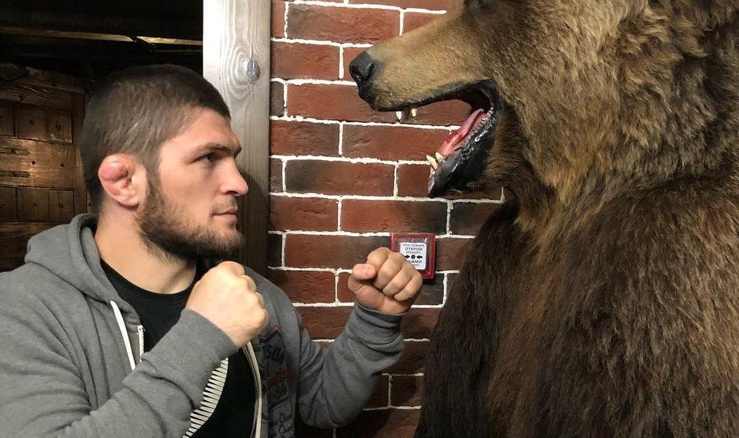 Cozmin Gușă: UE ne-a rezervat statutul de rezervație pentru urșii bruni